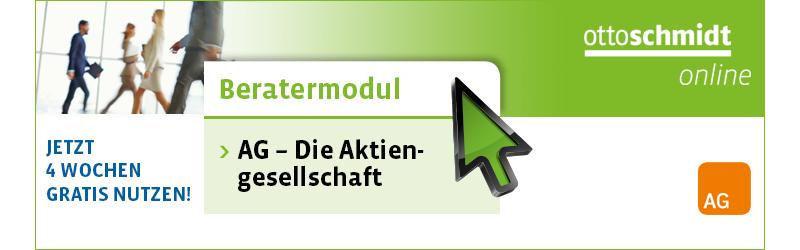 Beratermodul AG - Die Aktiengesellschaft
